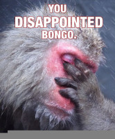 disappointed-bongo[1].jpg