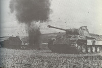 Panther_under_fire-px800.jpg