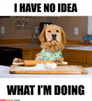 cooking-dog.jpg
