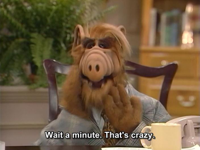 Alf.s01e16-17.-Try-to-Remember.mkv_snapshot_43.22_.jpg