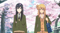[HorribleSubs]-Citrus-12-[720p].mkv_snapshot_21.55.jpg