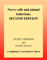 Peter_J._Simmons,_David_Young-Nerve_Cells_and_Anim.pdf