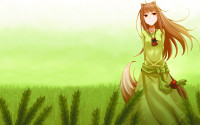 Konachan.com - 75817 green horo jpeg_artifacts spice_and_wolf.png