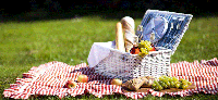 picnic-png-96-images-in-collection-page-3-picnic-p.png